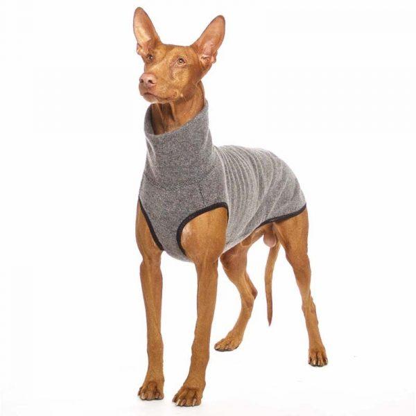 Sofa Dog - Hachico Jumper Exclusive - wollen trui-3516