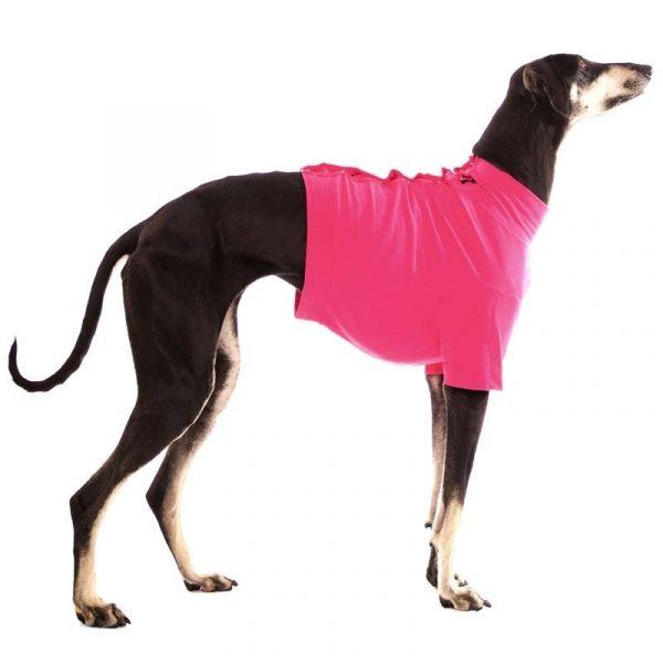 Sofa Dog - Oliver - Katoen underwear-3550