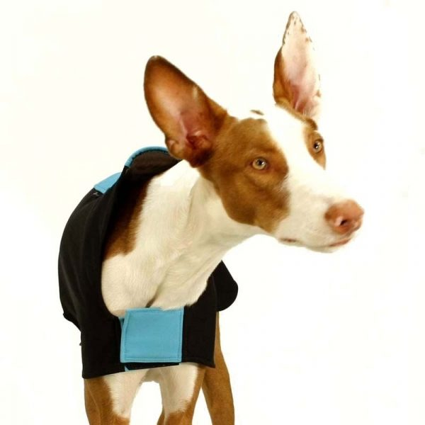 Sofa Dog - Miguel - Softshell jas-3741