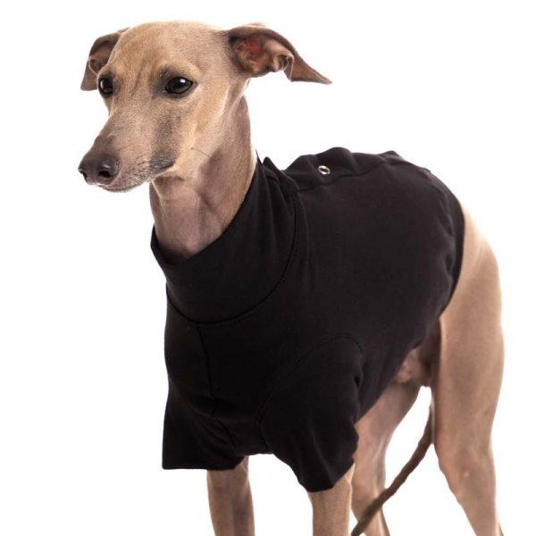 Sofa Dog - Oliver - Katoen underwear-3552