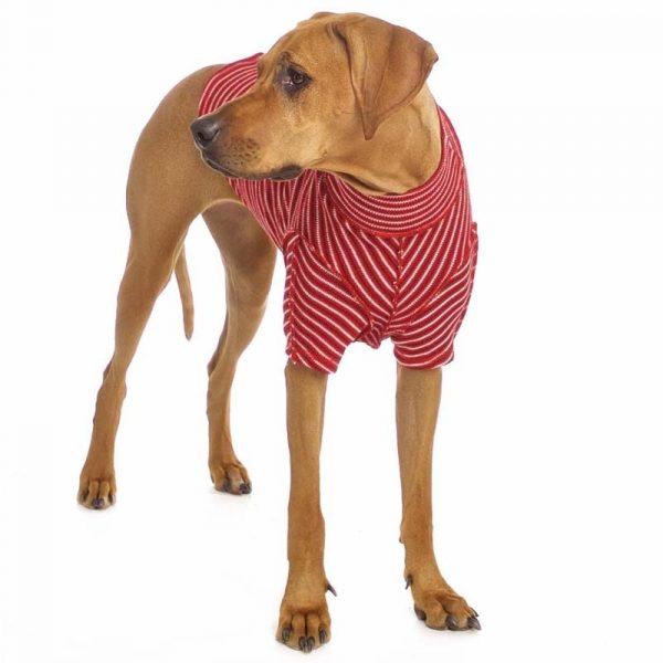 Sofa Dog - Bodie Forte - Onderhemd van stretch katoen-3573