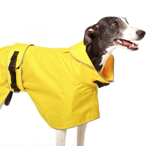Sofa Dog - Zoe - Waterdichte regenjas-3619
