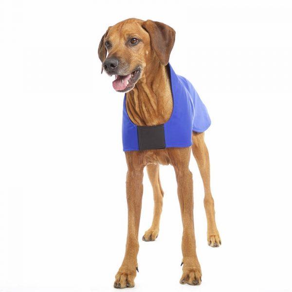 Sofa Dog - Miguel X - Waterproof Hondenjas met fleece-3383