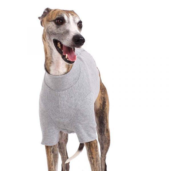 Sofa Dog - Oliver - Katoen underwear-3551