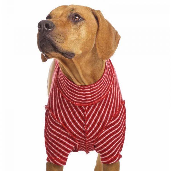 Sofa Dog - Bodie Forte - Onderhemd van stretch katoen-3574