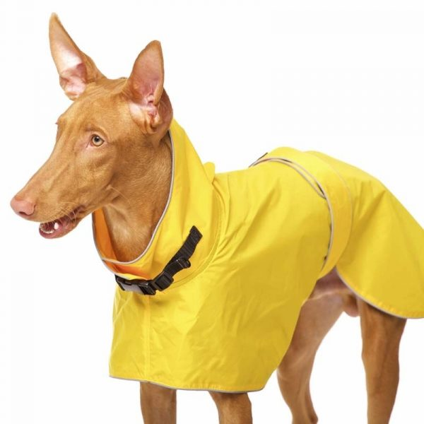 Sofa Dog - Zoe - Waterdichte regenjas-3620