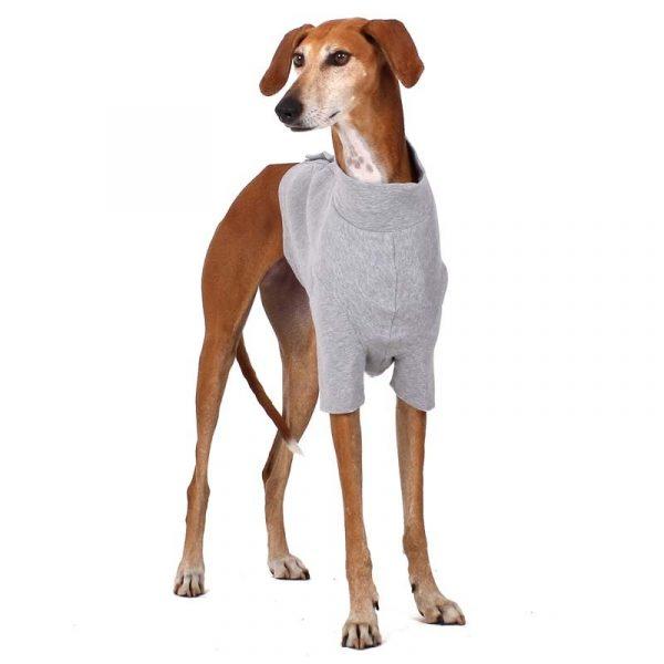 Sofa Dog - Oliver - Katoen underwear-3554