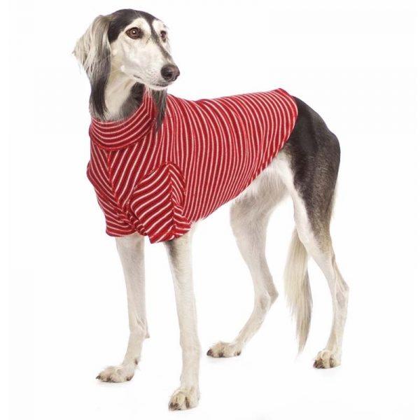 Sofa Dog - Bodie Forte - Onderhemd van stretch katoen-3575