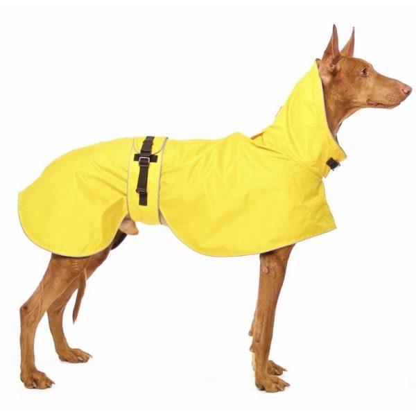 Sofa Dog - Zoe - Waterdichte regenjas-3621