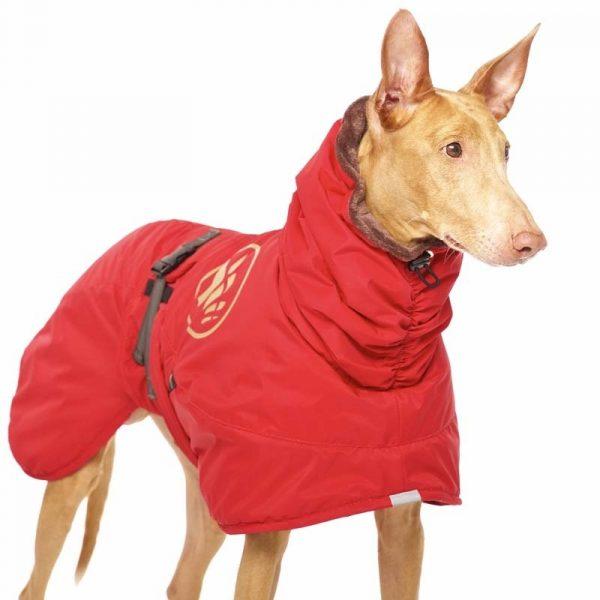Sofa Dog - Anubis - Warme Winterjas-3702
