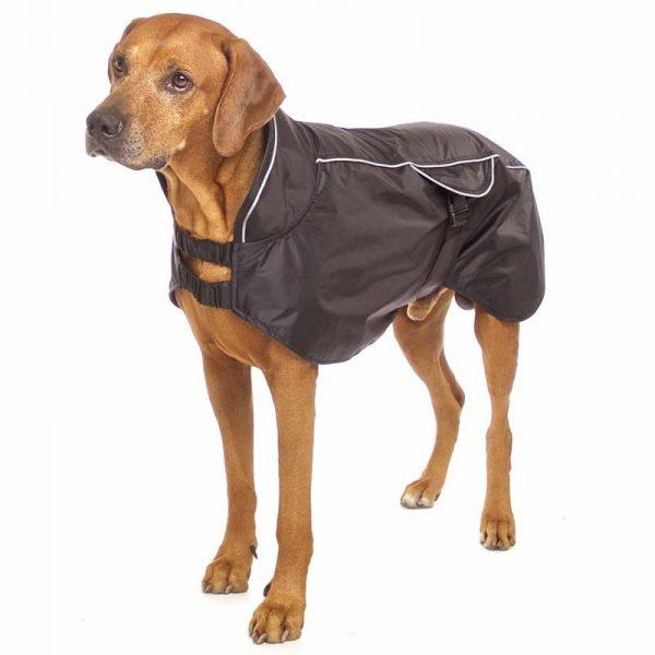 Sofa Dog - Poe - Honden regenjas met gaas voering-0