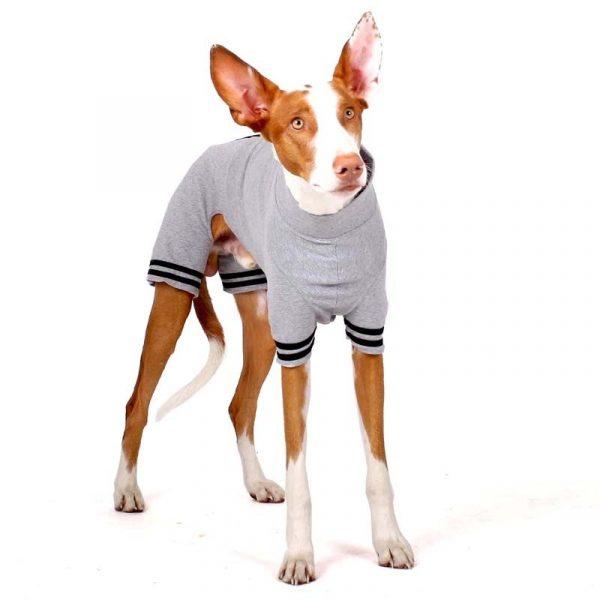 Sofa Dog -Oliver Plus-Z - Underwear met mouwen-3563