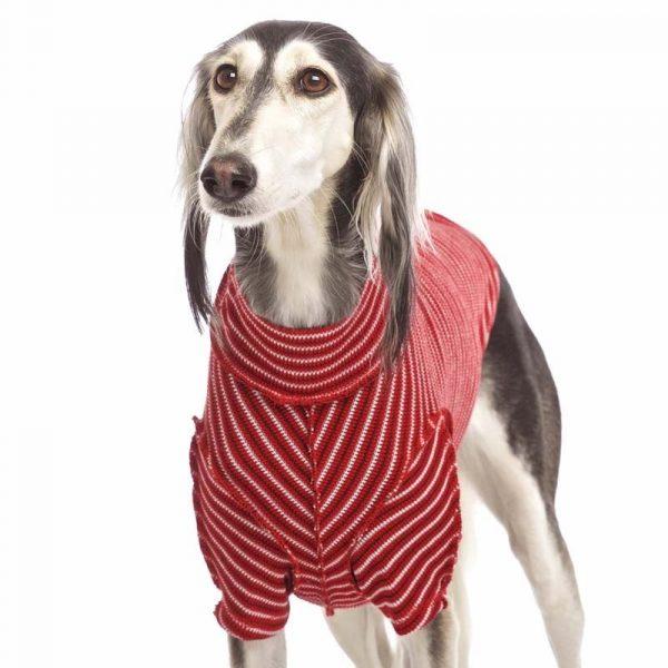Sofa Dog - Bodie Forte - Onderhemd van stretch katoen-3576